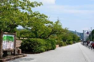 鳥取城跡,久松公園遊歩道の写真素材 [FYI02647435]