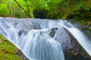 本沢渓谷 くまぎの滝の写真素材 [FYI02647466]