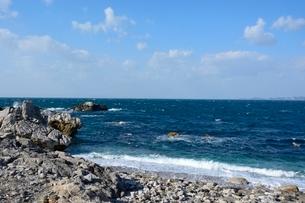 和歌山,白崎海洋公園の写真素材 [FYI02647505]