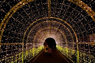 るり渓温泉,京都イルミエ-ル,天空の森の写真素材 [FYI02647533]