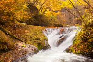 本沢渓谷 くまぎの滝の写真素材 [FYI02647691]