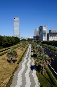 海浜大通りの遊歩道と高層ビル群の写真素材 [FYI02647769]