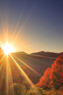 ゼロ磁場の水場付近から望む分杭峠の紅葉の樹林と夕日の写真素材 [FYI02648085]