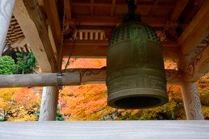 紅葉と長源寺のつり鐘の写真素材 [FYI02648132]
