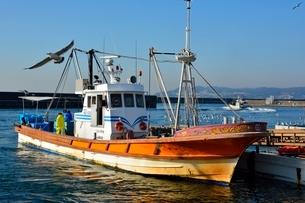 神戸 垂水漁港 イカナゴ漁船が帰るの写真素材 [FYI02648138]