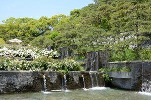 須磨離宮公園・欧風庭園とミニ滝の写真素材 [FYI02648206]