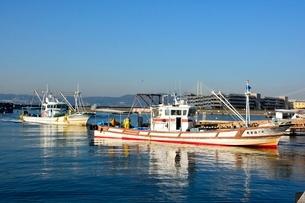 神戸 垂水漁港 イカナゴ漁船が帰るの写真素材 [FYI02648390]