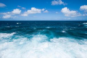 波しぶきとプナの青い海と雲の写真素材 [FYI02648538]