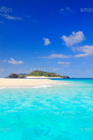 トロピカル色の海と安慶名敷島の砂州と嘉比島の写真素材 [FYI02648596]
