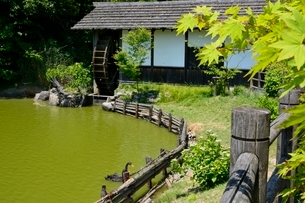 松江 フォーゲルパークそば水車の写真素材 [FYI02648626]