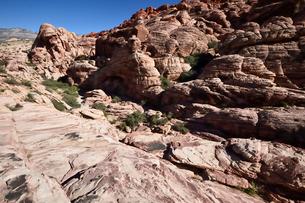 地層と色々な色の岩山が並ぶレッドロックキャニオン国立保護区の写真素材 [FYI02648924]