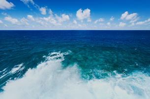 波しぶきとプナの青い海と雲の写真素材 [FYI02649021]