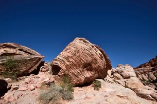 地層と色々な色の岩山が並ぶレットロックキャニオン国立保護区の写真素材 [FYI02649350]