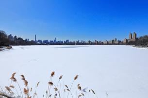 雪に覆われたセントラルパーク貯水池とマンハッタンスカイラインの写真素材 [FYI02649398]