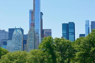 新緑のシープメドーとマンハッタン スカイラインの写真素材 [FYI02649601]