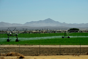 畑の灌水と山のある景観の写真素材 [FYI02649649]