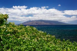 西マウイ島に浮かぶ雲と海とナウパカの写真素材 [FYI02649724]