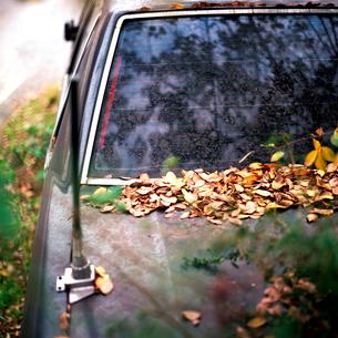 落葉がのる錆びた乗用車の写真素材 [FYI02649782]
