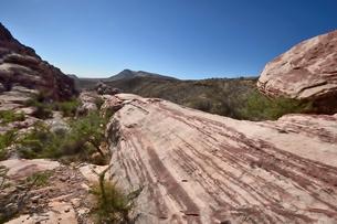 地層と色々な色の岩山が並ぶレットロックキャニオン国立保護区の写真素材 [FYI02649840]