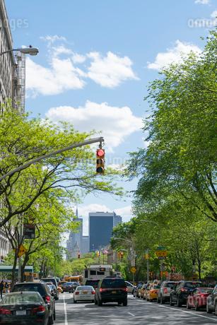 アップタウン マンハッタン セントラルパークイースト地区の新緑と五番街の写真素材 [FYI02649973]