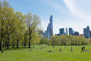 新緑のシープメドーとマンハッタン スカイラインの写真素材 [FYI02650032]