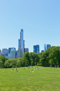新緑のシープメドーとマンハッタン スカイラインの写真素材 [FYI02650203]