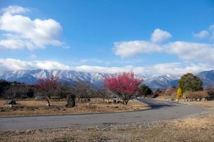 鈴鹿山脈と道の写真素材 [FYI02650528]