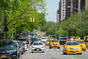 アッパーイースト マンハッタンの新緑に覆われたパークアベニューの写真素材 [FYI02650601]
