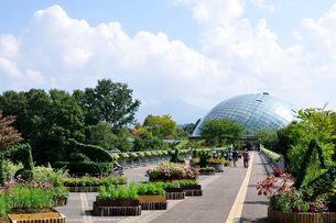 とっとり花回廊 園内からフラワードームを見るの写真素材 [FYI02650663]