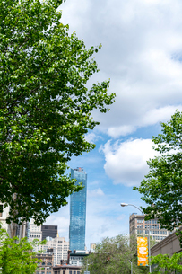 新緑の街路樹とミッドタウンの高級高層コンドミニアムを覆う雲の写真素材 [FYI02650822]