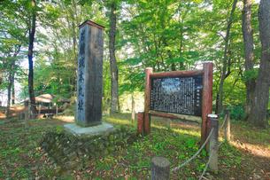 本丸跡の碑と解説板の写真素材 [FYI02650960]