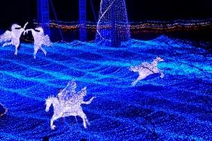 るり渓温泉,京都イルミエ-ル,天空の森の写真素材 [FYI02650998]