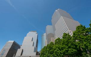 新緑の木々とワールドファイナンシャルセンターの高層ビル群の写真素材 [FYI02651012]
