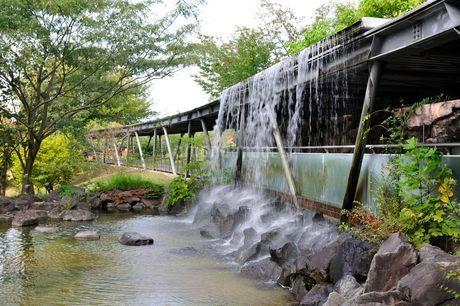 とっとり花回廊 園内から展望回廊人口の滝の写真素材 [FYI02651297]