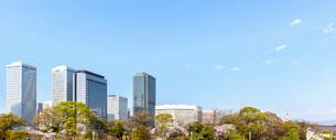 新緑と桜の大阪ビジネスパーク(OBP)の写真素材 [FYI02651598]