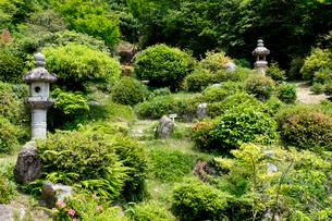 西福寺書院庭園の写真素材 [FYI02651787]