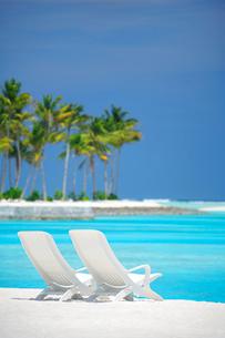 ビーチチェアとヤシの木と海の写真素材 [FYI02651815]