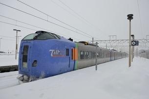 吹雪の南千歳駅を出発する特急列車 の写真素材 [FYI02651885]