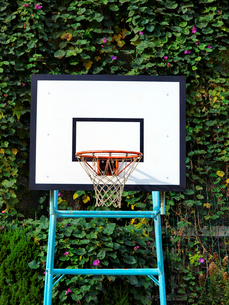 バスケットゴールの写真素材 [FYI02652004]