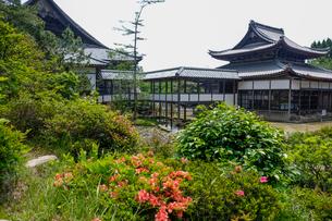 西福寺書院庭園の写真素材 [FYI02652121]