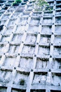 急傾斜地崩落防止用コンクリート枠の写真素材 [FYI02652127]