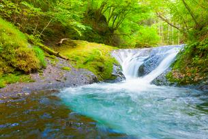 本沢渓谷 くまぎの滝の写真素材 [FYI02652161]