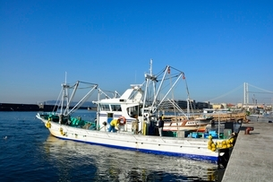 神戸 垂水漁港 イカナゴ漁船が帰るの写真素材 [FYI02652180]