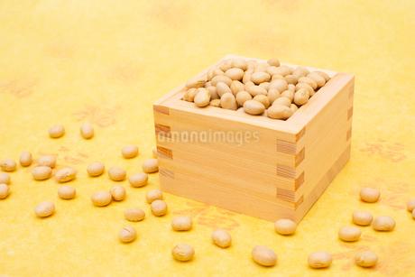 枡に入った煎り大豆の写真素材 [FYI02652300]