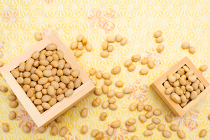枡に入った煎り大豆の写真素材 [FYI02652448]