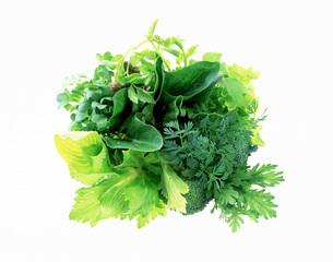 グリーンの野菜の写真素材 [FYI02652449]