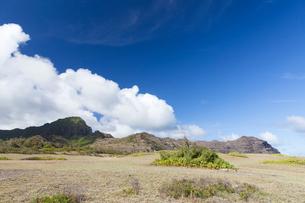 カウアイ島のマハウレプの海岸線からの眺望の写真素材 [FYI02652566]