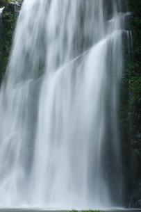桜滝の写真素材 [FYI02652601]