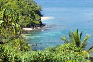 カウアイ島のハイダウェイビーチの写真素材 [FYI02652608]