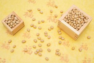 枡に入った煎り大豆の写真素材 [FYI02652814]
